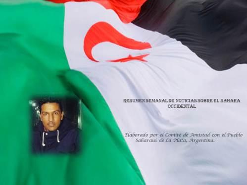 Resumen Mohamed Fadel uld Jatri
