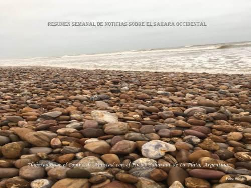 resumen-playa-el-aaiun-20162